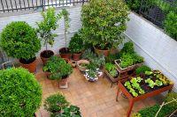 jardín en Sant Cugat