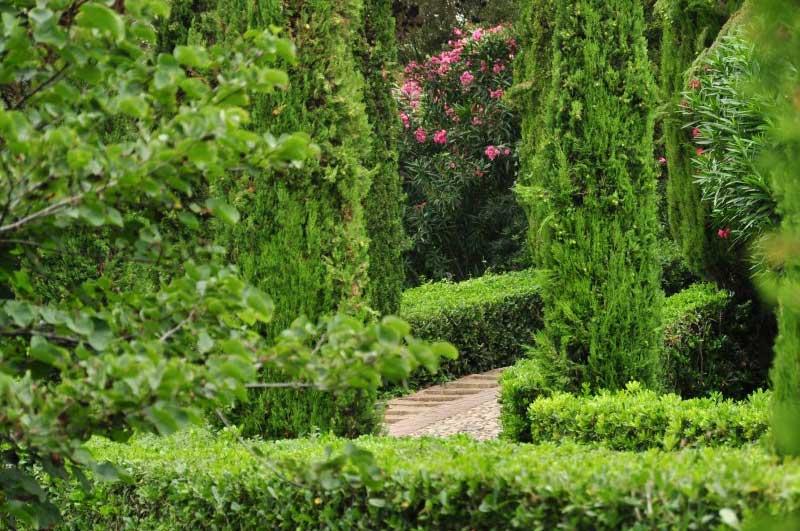 jardins de Santa Clotilde 08