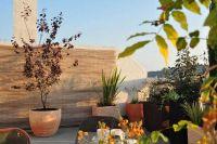 disseny integral de terrassa
