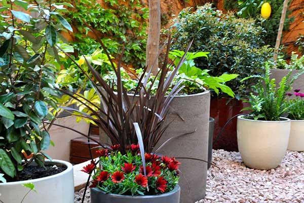 detalles jardín en Gracia