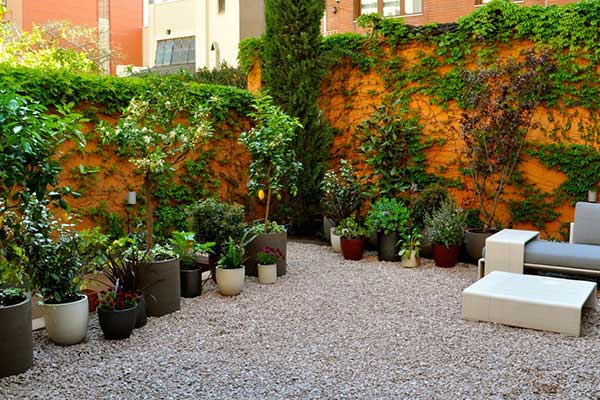 disseny de jardí a Gràcia