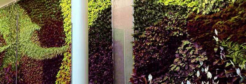 jardines verticales Barcelona