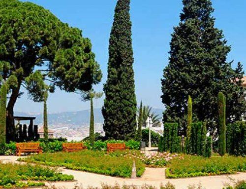 Barcelona apuesta por la jardinería ecológica