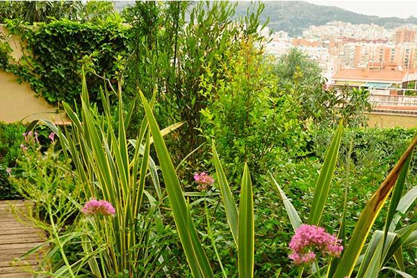 disseny de jardí a Horta