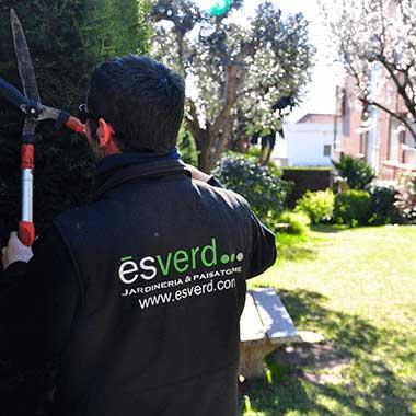 manteniment d'arbres a comunitats de veïns