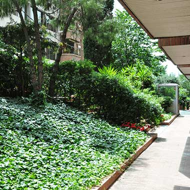 manteniment del jardí a comunitats