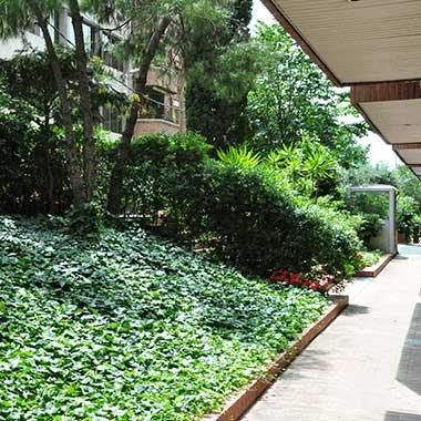 mantenimiento del jardín en comunidades