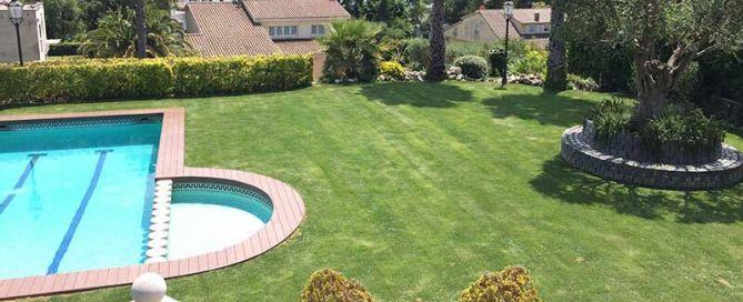 Blog de jardineria i paisatgisme sverd jardiners a for Jardineria barcelona
