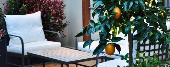 disseny de terrasses a Barcelona