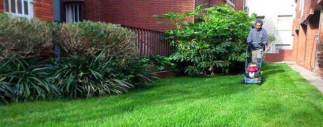 mantenimiento de jardines en barcelona sverd jardiner a