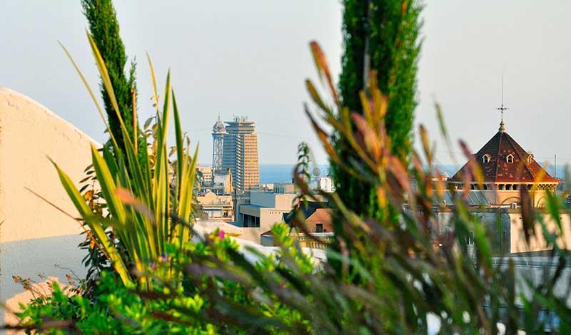 Proyectos De Jardines En Barcelona Sverd Jardiner A Y
