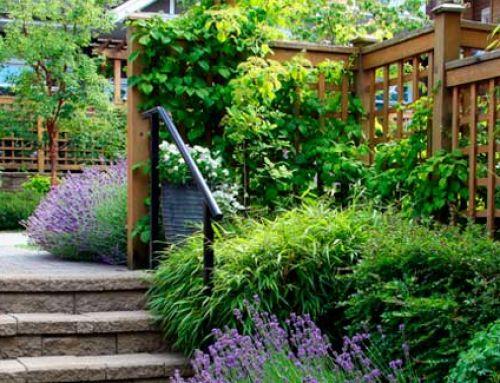 Tens un jardí petit i desaprofitat?