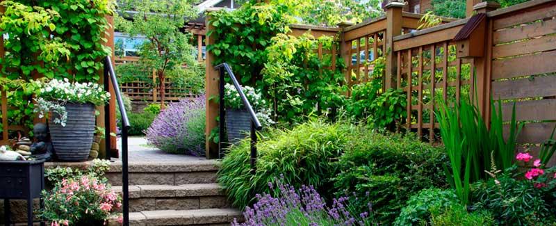 jardí petit
